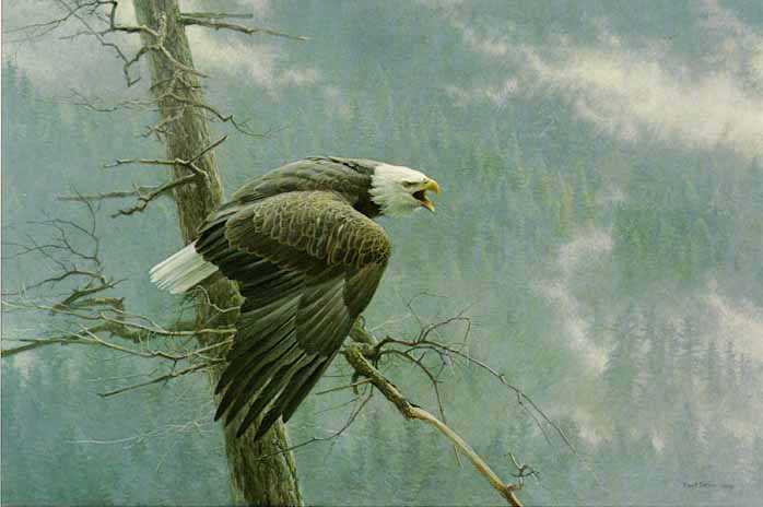 Robert Bateman - The Air, the Forest and the Watch