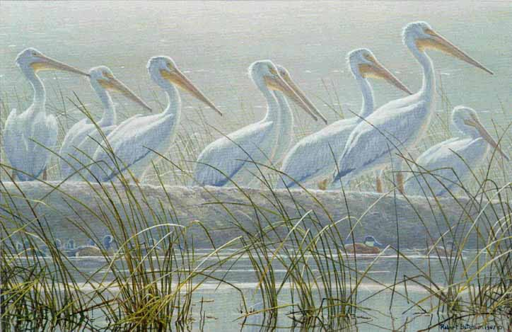 Robert Bateman - Bounty of the Wetlands