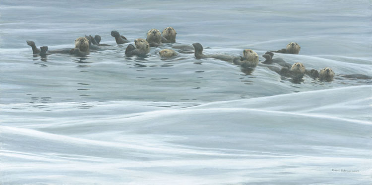 Robert Bateman - Raft of Otters