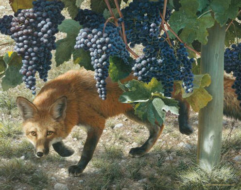 Carl Brenders - Between the Vines - Red Fox