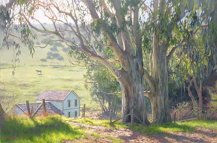 June Carey - Basking Eucalyptus