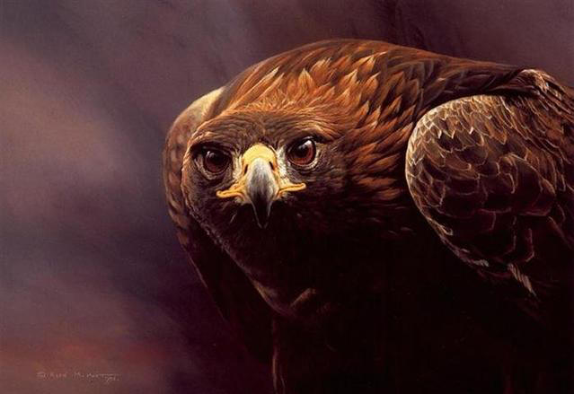 Alan Hunt - Magnificent - Golden Eagle