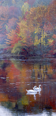 Terry Isaac - Autumn Reflections