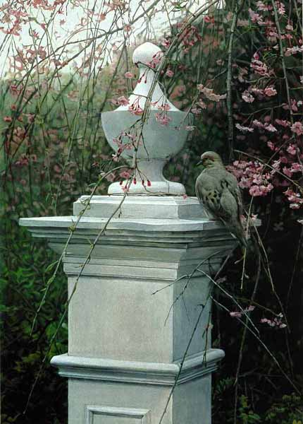 Terry Isaac - Garden Tapestry - Mourning Dove