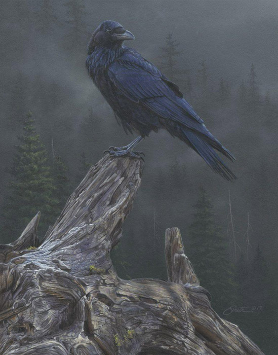 Daniel Smith - Raven's Roost